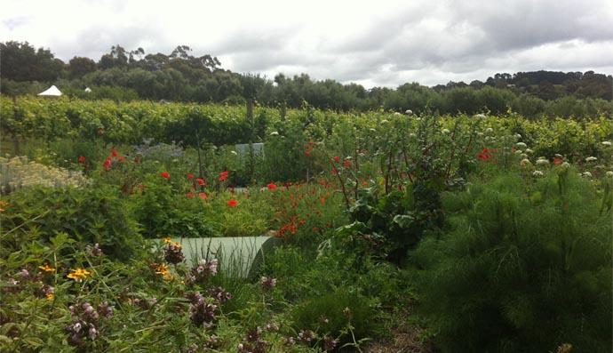 montalto garden